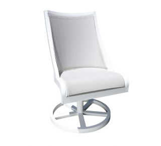 Product Name: Swing Swivel Rocker