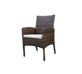 Product Name: Portfino Dining Arm Chair
